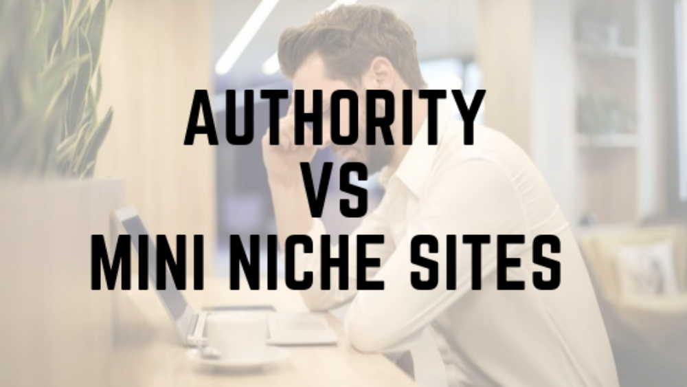 Authority VS Mini Niche Websites