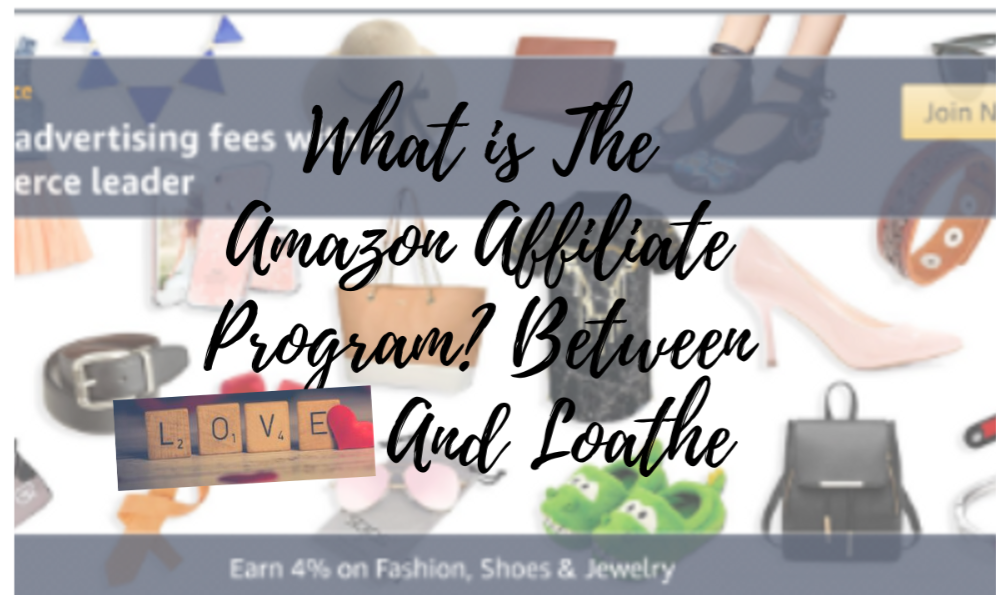 What Is The Amazon Affiliate Program Between Love And Loathe